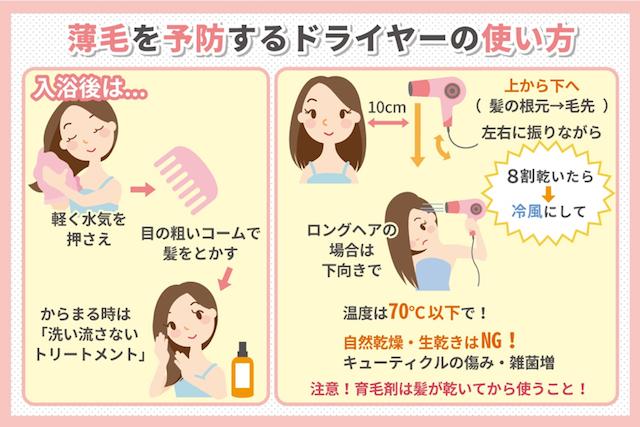 薄毛を予防するドライヤーの使い方