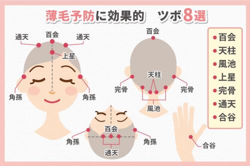 薄毛予防に効果的 ツボ8選